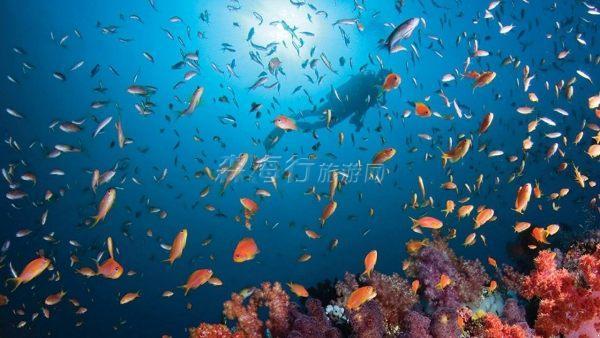 馬爾代夫庫達呼拉四季度假村 Four Seasons Resort Maldi