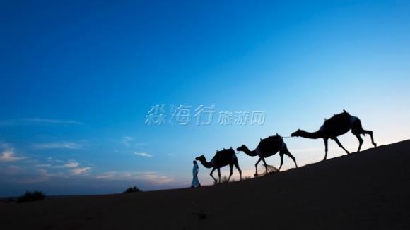 阿拉伯聯合酋長國阿瑪哈沙漠度假村