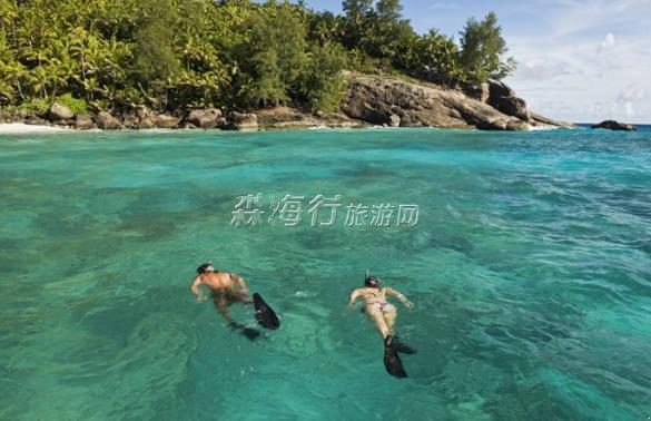 新西兰北岛地图像条大鱼
