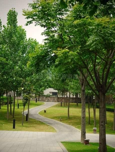 南京香樟华苹温泉度假别墅