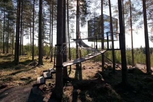 在瑞典哈拉斯树屋酒店欣赏极光极昼