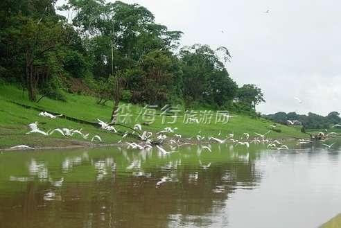 奢華狂野巴西亞馬遜熱帶森林生態深度游12晚16天 (2人成團) ¥98000元/人起